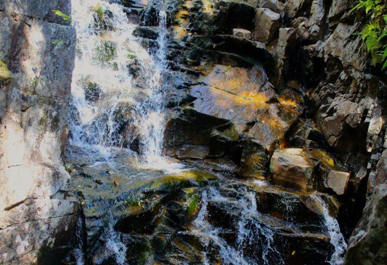 Basin Cascades Trail, Franconia